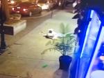 Video: Ľudia utekali pred streľbou. Mladý muž prekvapil hrdinským konaním