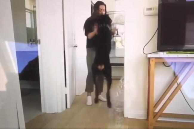 Video: Youtuberka omylom zverejnila šokujúce video so psom