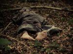 Záhadná vražda: Nahú a zastrelenú ženu pochovajú bez identifikácie