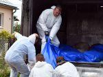 Africký mor ošípaných sa šíri, ŠVPS eviduje ďalšie prípady nákazy