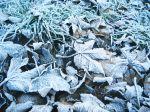 Meteorológovia varujú pred mrazmi