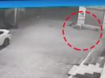 Video: Žena odhodila novorodenca v igelitovej taške. Túlavé psy prekvapili svojim konaním