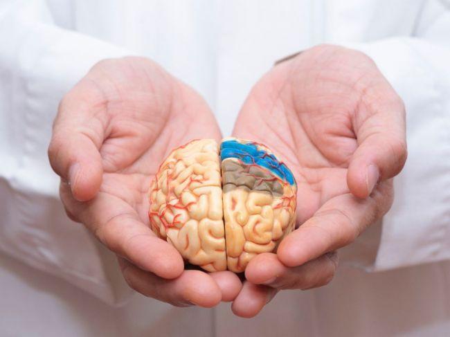 Priveľa tejto látky v strave zvyšuje riziko demencie, varujú lekári