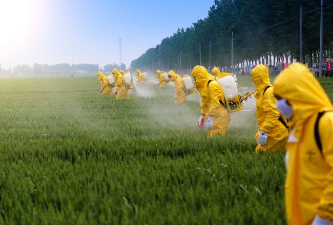 Výbor EP pre životné prostredie požaduje výrazne zníženie pesticídov v EÚ