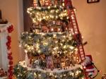 Video: Toto nie je obyčajný stromček. Sledujte, čo dokáže