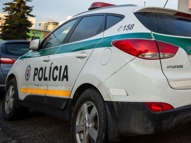 Bratislavskí policajti obvinili taxikára, ktorý nafúkal 3,67 promile