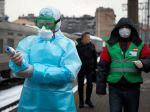 V Rusku zabíjajú túlavé zvieratá zo strachu pred koronavírusom