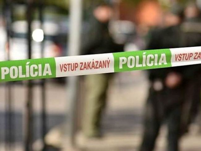 63-ročný muž zabil o rok staršieho brata