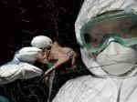 Prečo sa vírusy čoraz častejšie prenášajú zo zvierat na ľudí:Vedci upozorňujú na naše činy