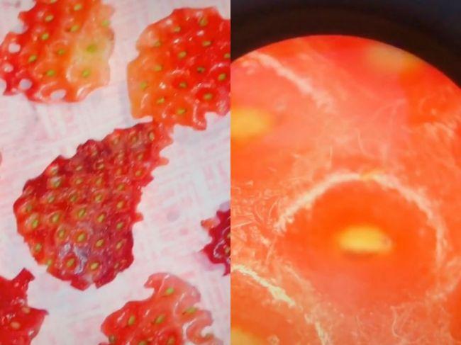 Video: Toto sa stane, keď jahody namočíte do slanej vody
