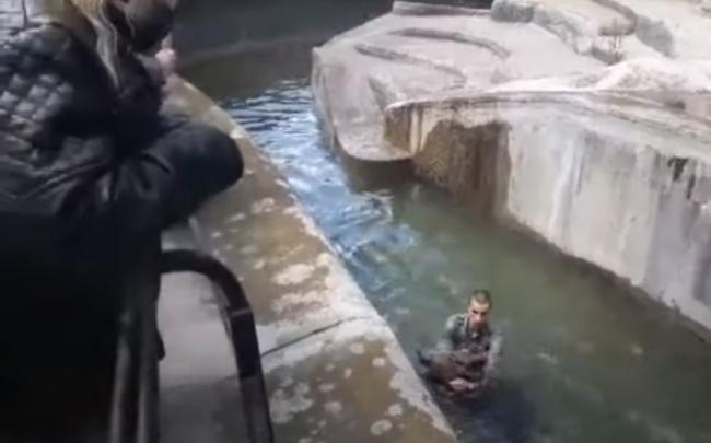 Video: Muž sa v zoo snažil utopiť medvedicu