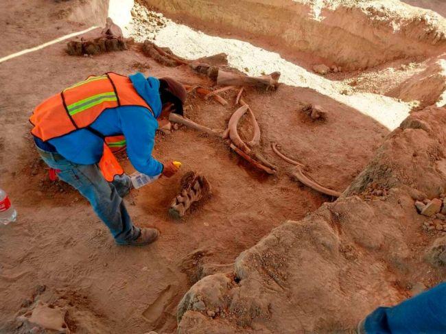 Archeológovia objavili kosti približne 60 mamutov