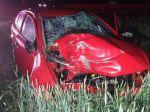 Po náraze do stromu vodič zraneniam podľahol