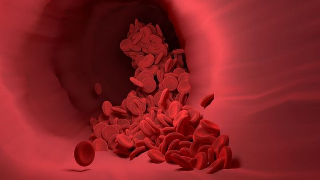Prekvapivé zistenie o koronavíruse: Respiračný vírus poškodzuje cievy