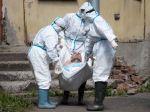 WHO nabáda Rusko chrániť zdravie verejnosti počas osláv konca vojny i referenda