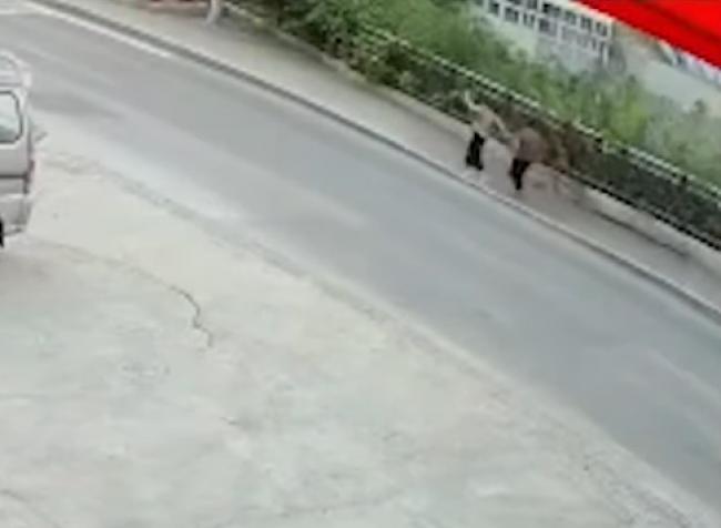 Video: Pod ženami sa prepadla zem, časť mosta sa nečakane zrútila