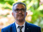 WHO: Podklady pre vyšetrovanie pôvodu koronavírusovej pandémie sú hotové