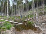 V prameni v Demänovskej doline sa nachádza fekálny odpad, tvrdí OZ Za našu vodu