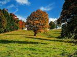 Na Slovensku nastane v utorok 22. septembra astronomická jeseň