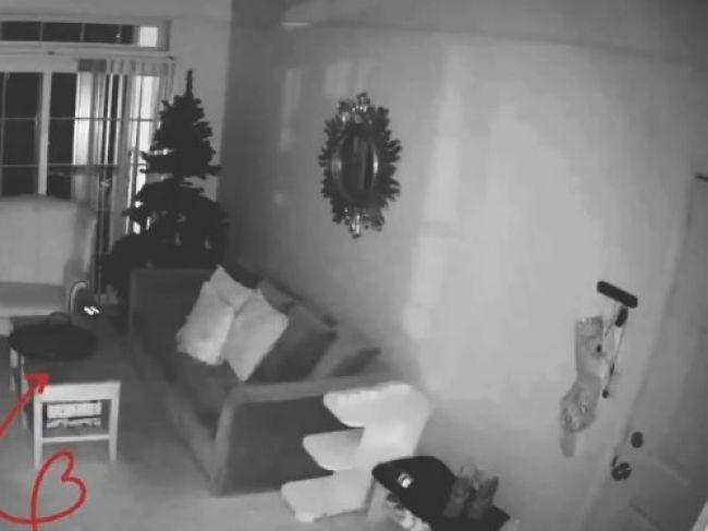 Video: Pohľad na kocúra majiteľke takmer zlomil srdce. Po tomto ho už samého doma nenechá