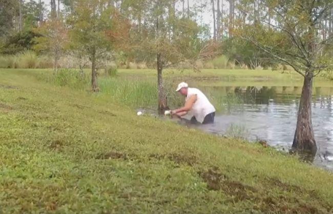 Video: Psa stiahol do vody predátor, takto musel zasiahnuť majiteľ