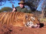 Slovák ulovil tigra, hrozí mu päťročné väzenie