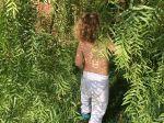 Deti, ktoré toto robili v detstve, majú nižšie riziko depresie