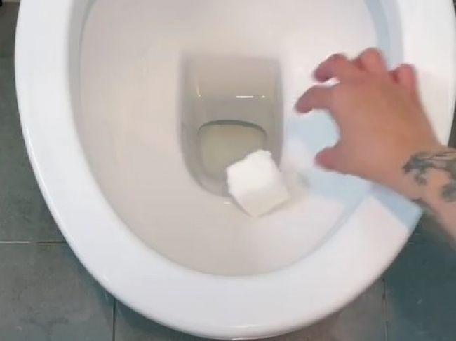 Video: Mama vymyslela samočistiacu kocku do toalety. Stačia vám 3 suroviny