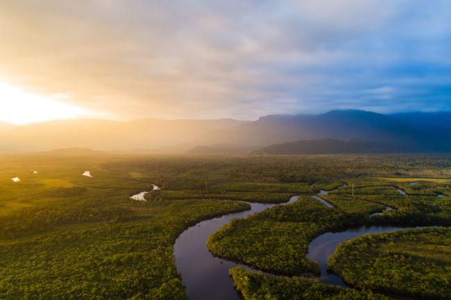 Štúdia: Amazonský prales vznikol vďaka meteoritu, ktorý vyhubil dinosaurov
