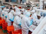 V týchto fabrikách sa najviac šíri COVID-19
