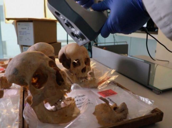 Medzinárodný tím skúma DNA Krištofa Kolumbusa, chce zistiť jeho pôvod