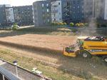 Video: Farmár odmietol predať pozemok developerom, dnes žne úrodu medzi panelákmi