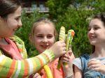 Zmrzlina sa na Slovensku už takmer nevyrába