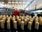 Český pivovar Budvar zaznamenal nárast čistého zisku počas pandémie