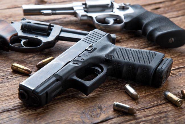 Právo brániť život so zbraňou bude zakotvené v Českej ústave, schválil Senát