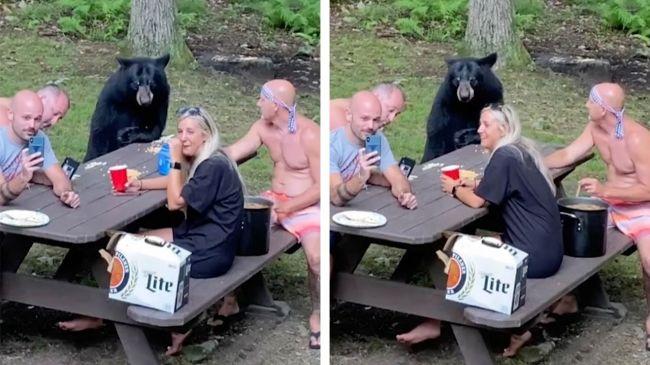 Video: K rodine sa pri stole pripojil medveď. Muž sediaci oproti urobil niečo neuveriteľné