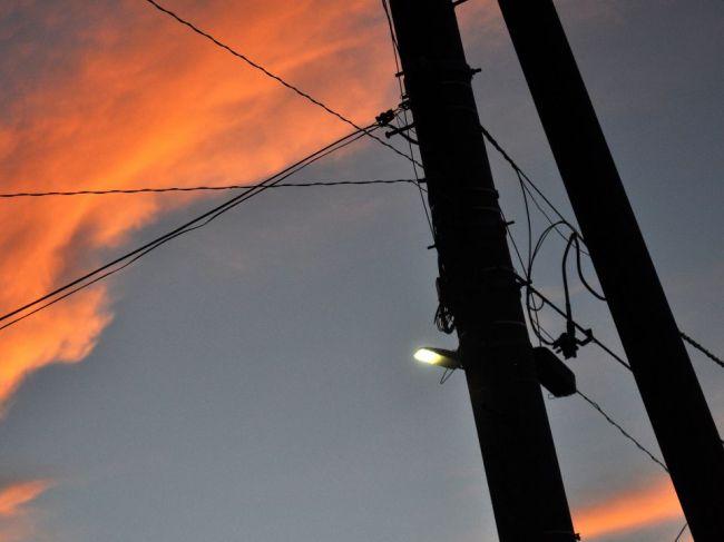 Svetelný smog vedie k úbytku hmyzu, najviac škodia pouličné LED lampy