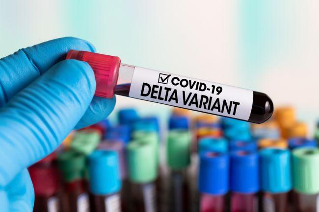 Delta variant koronavírusu je menej citlivý na protilátky