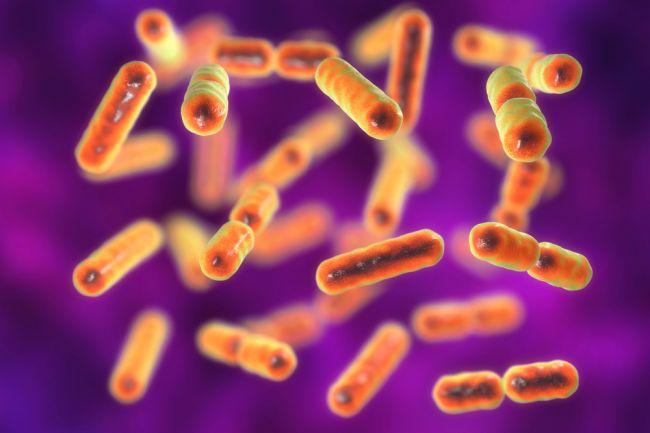 Užívanie antibiotík súvisí s rakovinou o 10 rokov neskôr
