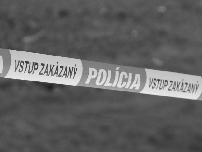 Polícia odvolala pátranie po dvoch chlapcoch, našli ich mŕtvych